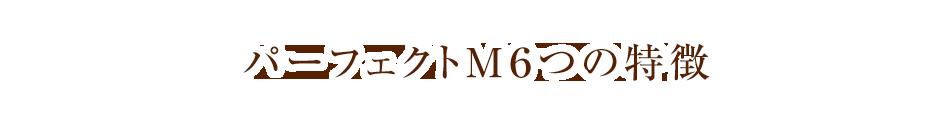パーフェクトM6つの特徴